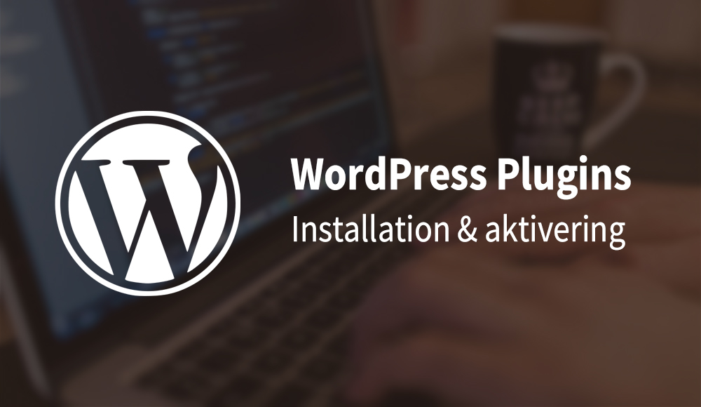 WordPress Plugins - Installation & aktivering